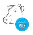 Cow milk logo vector image
