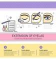 extension of eyelas cosmetology infographics salon vector image