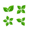 green leaf ecology and organic abstract vector image
