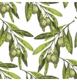 seamless pattern with hand drawn olives vector image