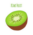 tropical fruitkiwi whole halfflat style vector image