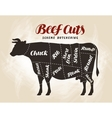 Beef cuts diagram for design vector image