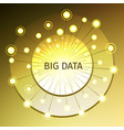 big data with a gold disc vector image