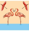 Flamingos in flight and water vector image vector image