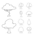 isolated object of tree and nature symbol vector image