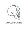 skull side view line icon linear concept vector image vector image