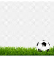 soccer ball with grass border transparent vector image