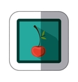 sticker colorful square with cherry fruit vector image vector image