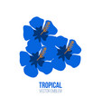 three blue hibiscus flowers logo design vector image