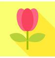 Tulip flower vector image vector image