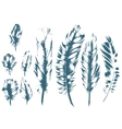 Vintage Feather blue set Hand-drawn vector image vector image