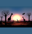 background scene with silhouette giraffe in the vector image vector image
