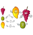 Cartoon mango grape and kiwi fruits vector image vector image