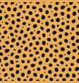 cheetah animal print seamless pattern vector image