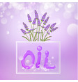 cosmetic oil lotion with lavender flowers vector image vector image