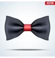 Realistic magic bow tie vector image vector image