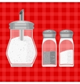 Sugar salt and pepper vector image
