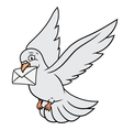White pigeon is carrying letter vector image vector image