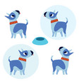 cute bull terrier dogs white background vector image