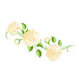 decorative element with yellow roses beautiful vector image
