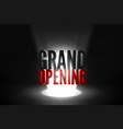 grand opening event banner vector image