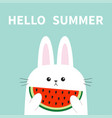 hello summer white bunny rabbit head face holding vector image vector image