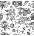 hops and barley seamless pattern malt beer vector image vector image
