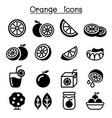 orange icon set vector image vector image