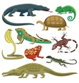 Reptiles animals set vector image