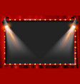 a spotlight theatre stage vector image vector image