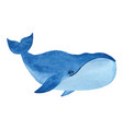 bowhead whale vector image vector image