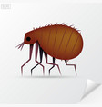 Cartoon brown insect flea in material style vector image vector image