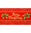 Gold texture glitter Xmas lettering on red vector image vector image