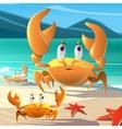 a cartoon crabs at the seashore vector image vector image