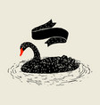 background with floating black swan hand drawn vector image