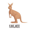 cute kangaroo in flat style vector image vector image
