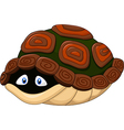 Cute turtle hides in its shell vector image vector image