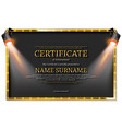 luxury certificate with spotlights vector image