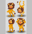 set cute lion on transparent background vector image