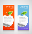 Brochure design apple concept vector image vector image