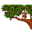 cartoon squirrel on apple tree vector image vector image