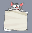 cartoon surprised cat holding a blank sheet of vector image