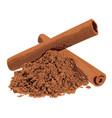 cinnamon spice vector image vector image