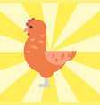 cute cartoon rooster chicken vector image vector image