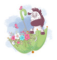 cute cartoon zebra in an umbrella with flowers vector image