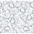 graphic magnolia flowers and buds hand drawn vector image vector image
