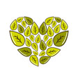 green leaves with form of heart vector image vector image