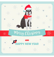 holiday greeting card with husky vector image