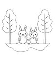 line cute couple rabbit animal in the landscape vector image vector image