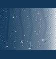 rain drops on window realistic 3d condensation vector image
